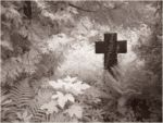 Suedfriedhof1_Leipzig_